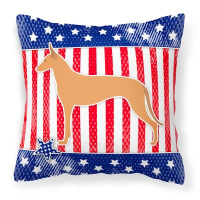 Patriotic Indoor/Outdoor Throw Pillow Size: 14 H x 14 W x 3 D