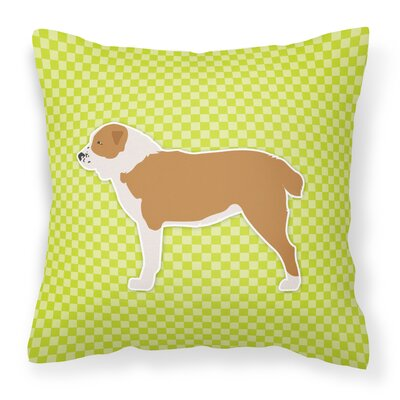 Frabic Indoor/Outdoor Throw Pillow Size: 14 H x 14 W x 3 D, Color: Green