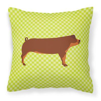 Pig Check Outdoor Throw Pillow Color: Green