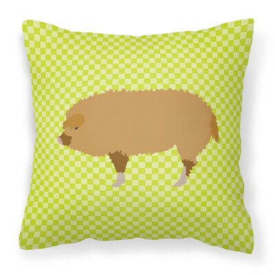 Pig Check Fabric Outdoor Throw Pillow Color: Green
