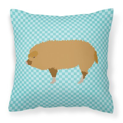 Pig Check Fabric Outdoor Throw Pillow Color: Blue