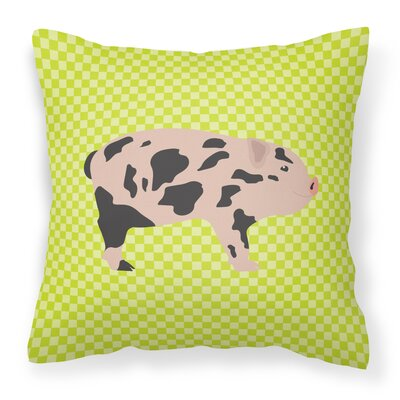 Pig Check Square Outdoor Throw Pillow Color: Green