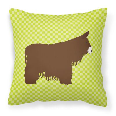 Eclectic Donkey Check Outdoor Throw Pillow Color: Green
