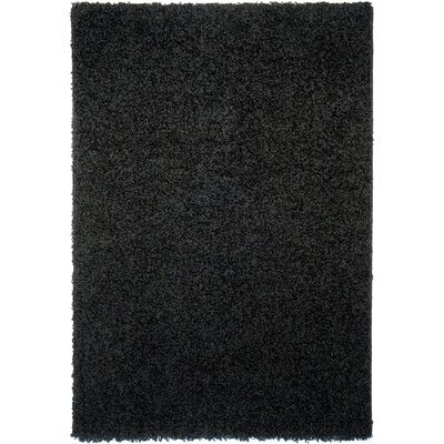 Burns Single Solid Black Shag Area Rug Rug Size: Rectangle 67 x 93