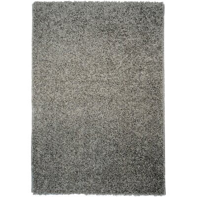 Burns Single Solid Grey Shag Area Rug Rug Size: Rectangle 67 x 93