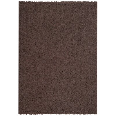 Burns Single Solid Brown Shag Area Rug Rug Size: 33 x 48