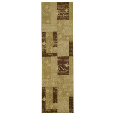 Pasha Maxy Home Contemporary Floral Boxes Ivory/Beige Area Rug Rug Size: Runner 111 x 611