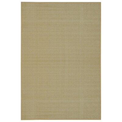 Harland Maxy Home Solid Single Plain Ivory Area Rug Rug Size: 33 x 5