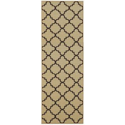Garin Moroccan Trellis Doormat Rug Size: Runner 18 x 411