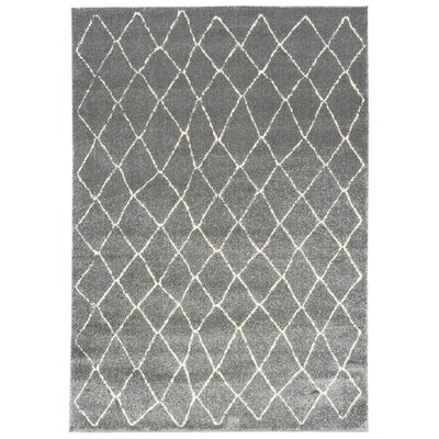 Zahra Gray Indoor/Outdoor Area Rug Rug Size: Rectangle 5 x 7