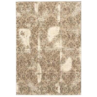 Zahra Cream/Beige Indoor/Outdoor Area Rug Rug Size: 3' x 5'