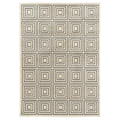 Zahra Gray Indoor/Outdoor Area Rug Rug Size: 3' x 5'