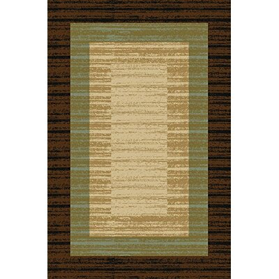 Cooke Maxy Home Floral Box Chocolate/Brown Area Rug Rug Size: Runner 110 x 69