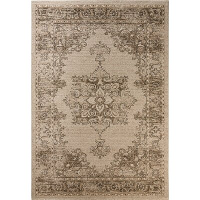 Carmel Beige & Brown Area Rug Rug Size: Runner 2 x 8