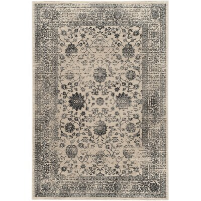 Minonk Beige & Blue Area Rug Rug Size: Rectangle 4 x 6