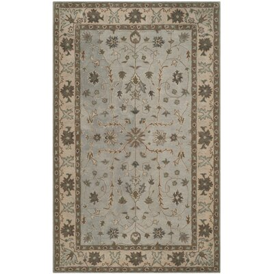 Heritage Green/Beige Area Rug Rug Size: Rectangle 4 x 6