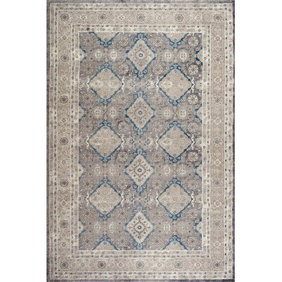Sofia Light Gray/Beige Area Rug Rug Size: Rectangle 9 x 12