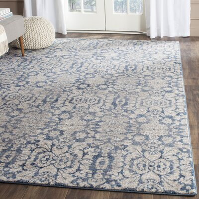 Sofia Blue/Beige Area Rug Rug Size: Rectangle 67 x 92