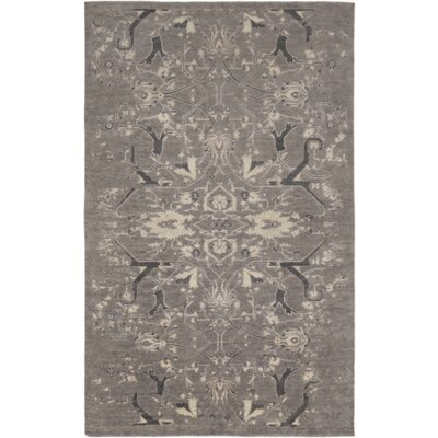 Chebanse Hand-Knotted Gray Area Rug Rug Size: Rectangle 4 x 6