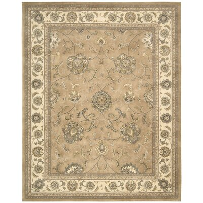 Media Hand-Tufted Beige Area Rug Rug Size: 5 x 8