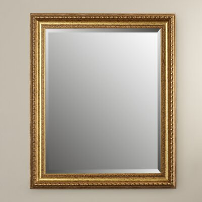 Pynnoke Lucia Wall Mirror Finish: Vintage Gold