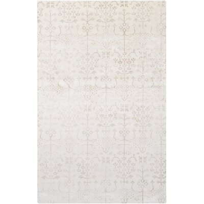 Iroquois Hand Woven Gray Area Rug Rug Size: 33 x 53