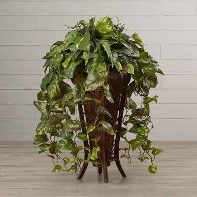 Woode Vining Mixed Floor Plant in Decorative Vase
