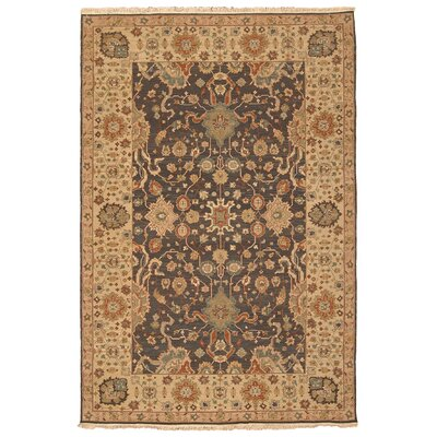 Coyne Hand-Knotted Midnight Area Rug Rug Size: Rectangle 810 x 1110