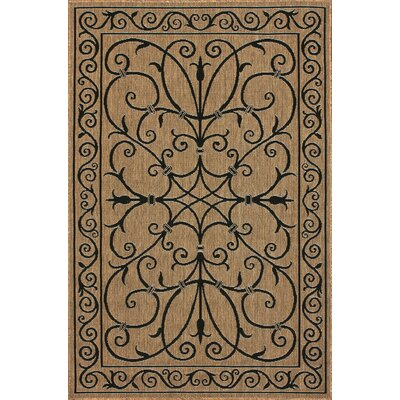 Bradford Brown Warbray Indoor/Outdoor Area Rug Rug Size: 63 x 92