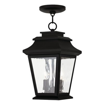 Campfield 2-Light Outdoor Hanging Lantern Finish: Black