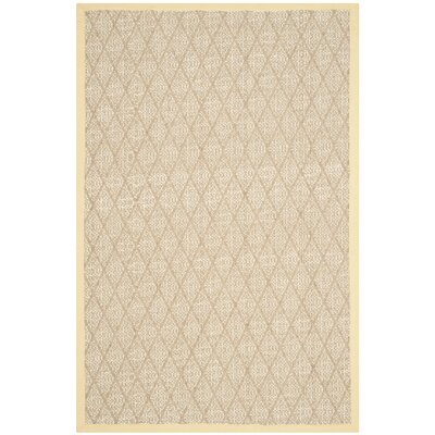 Hand-Woven Area Rug Rug Size: Rectangle 6' x 9'