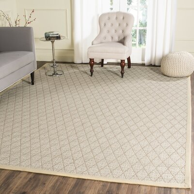 Hand-Woven Area Rug Rug Size: Rectangle 4 x 6