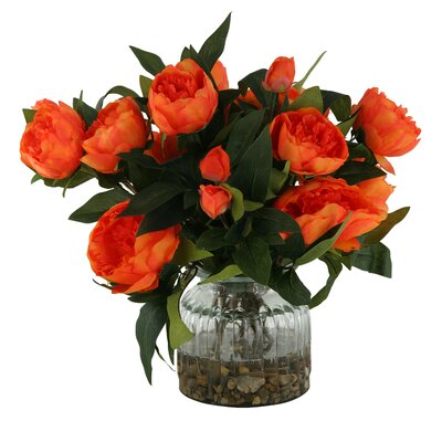 Peonies in Glass Vase Color: Orange DBHC6260 27711903