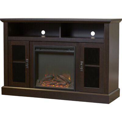 Rosier 47 TV Stand with Electric Fireplace Finish: Espresso