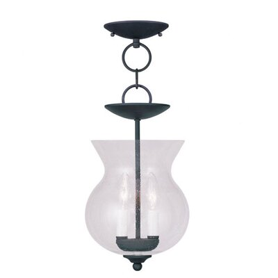 Sackler Foyer Pendant Finish: Black