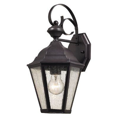 Drennen 1-Light Outdoor Wall Lantern