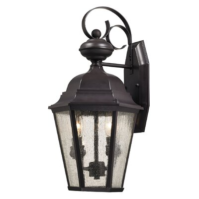 Drennen 2-Light Outdoor Wall Lantern