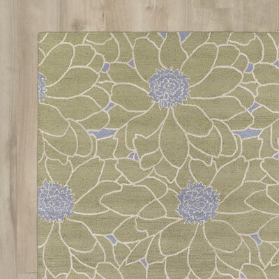 Evans Hand-Tufted Green Area Rug