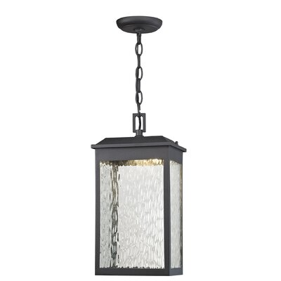 Alyn 1-Light Outdoor Hanging Lantern