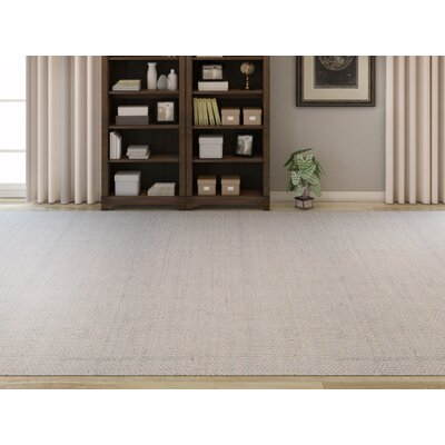 Light Hand-Woven Gray Area Rug Rug Size: Rectangle 26 x 4