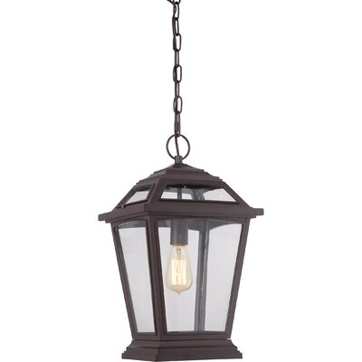Ahoghill 1-Light Outdoor Hanging Lantern