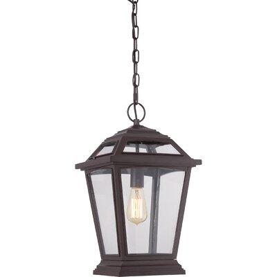 Ahoghill 1-Light Outdoor Hanging Lantern