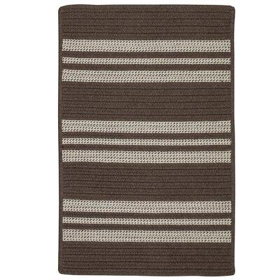 Neponset Hand-Woven Brown Indoor/Outdoor Area Rug Rug Size: 3 x 5