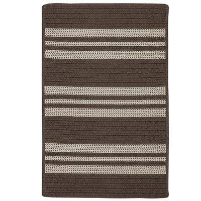 Neponset Hand-Woven Brown Indoor/Outdoor Area Rug Rug Size: 9 x 12