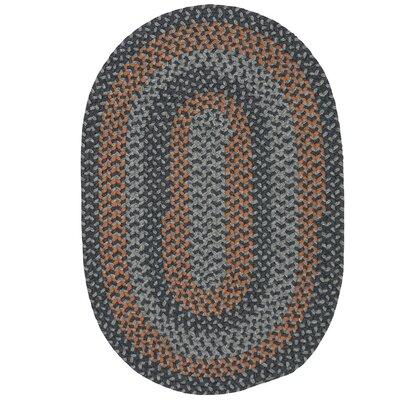 Charleston Hand-Woven Gray/Brown Area Rug Rug Size: Oval 10 x 13