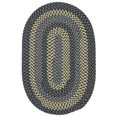 Charleston Hand-Woven Gray Area Rug Rug Size: Oval Runner 2 x 6
