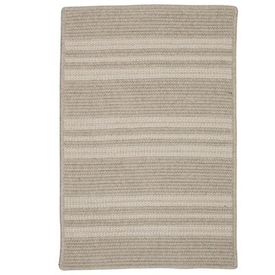 Neponset Hand-Woven Brown Indoor/Outdoor Area Rug Rug Size: 8 x 10