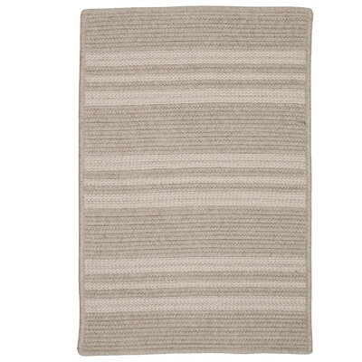 Neponset Hand-Woven Brown Indoor/Outdoor Area Rug Rug Size: 6 x 9