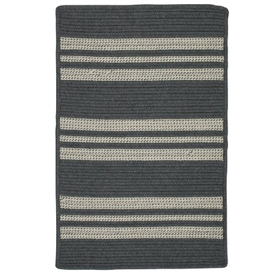 Neponset Hand-Woven Gray Indoor/Outdoor Area Rug Rug Size: 3 x 5