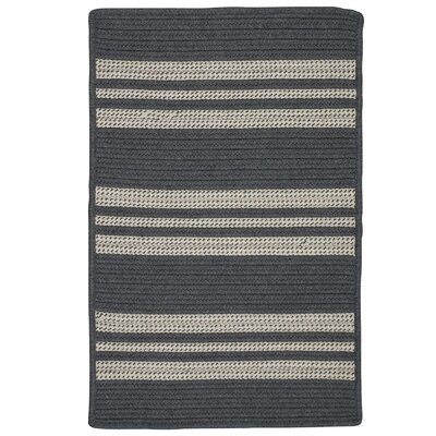 Neponset Hand-Woven Gray Indoor/Outdoor Area Rug Rug Size: 9 x 12